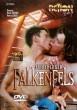 Ferienlager Falkenfels DVD - Front