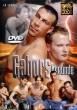 Gabors Freunde DVD - Front