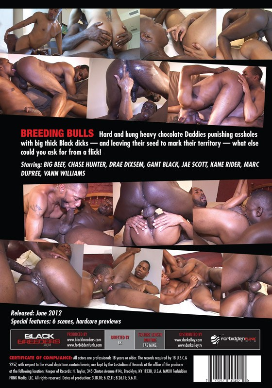 Breeding Bulls DVD - Back