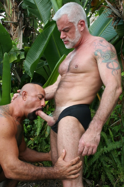 Dads Fuck Dads DVD - Gallery - 007