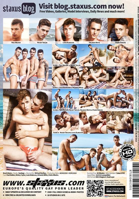 Beach Bums (SauVage) DVD - Back
