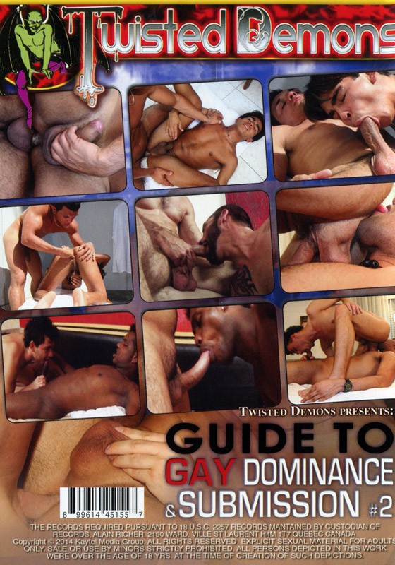 Guide to Gay Dominance & Submission Vol. 2 DVD - Back