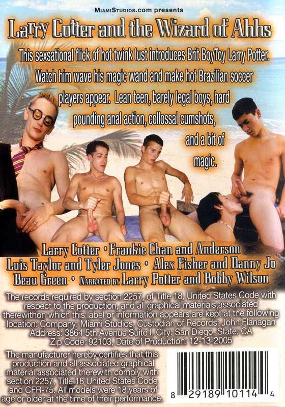 Larry Cotter and the Wizard of Ahhs DVD - Back
