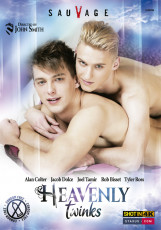 Heavenly Twinks DVD
