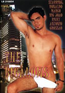 The Bigalows DVDR (NC)