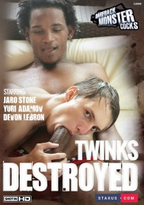 Twinks Destroyed DVD