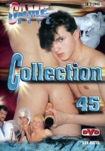 Game Boys Collection 45 DVDR