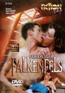 Ferienlager Falkenfels DVD