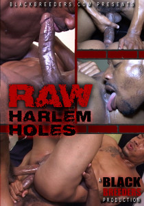 Raw Harlem Holes DVD