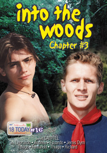 Into the Woods chapter 3 DVD